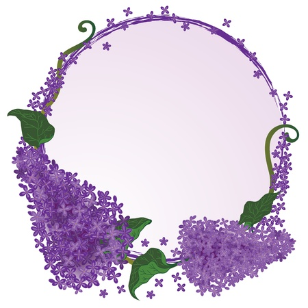lilac background: vector frame with flowers of the  lilac