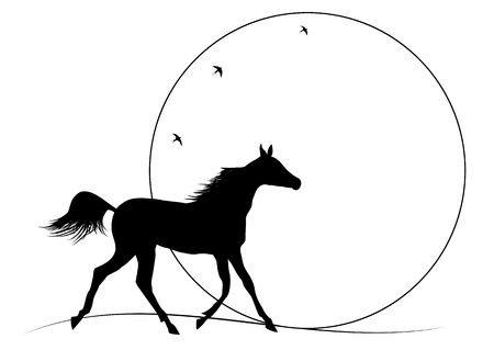 illustration of running horse against sunset Vector