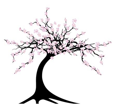 illustration of the cherry tree on white