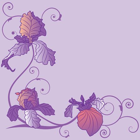 background with flowers of irises for corner design Vector