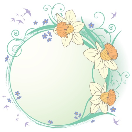 narcissus: vector frame with flowers of narcissus and forget-me-not
