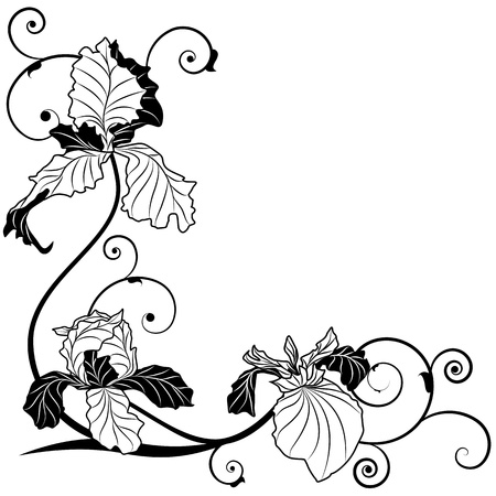 iris: vector background with flowers of irises for corner design in black and white