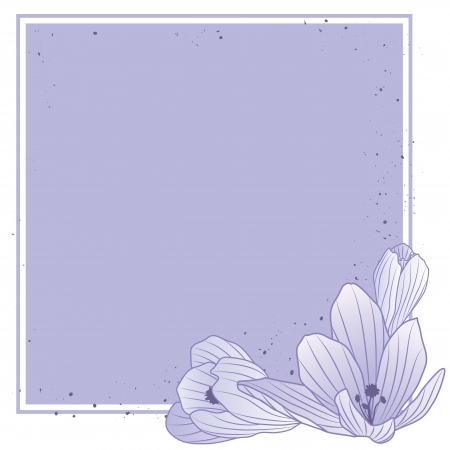 vector square frame with flowers of crocus  Stock Vector - 17894976