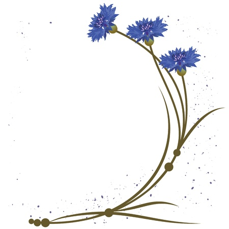 background with flowers of the cornflowers  Vector