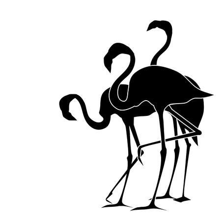 black and white backgrounds: Flamingos Illustration