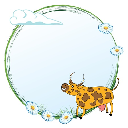 ox eye daisy: frame with funny cow and flowers of daisy