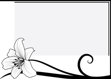 흑백 색상에서 릴리와 함께 벡터 프레임 일러스트