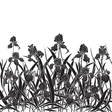 stile liberty: illustrazione vettoriale di iris in colori bianco e nero Vettoriali