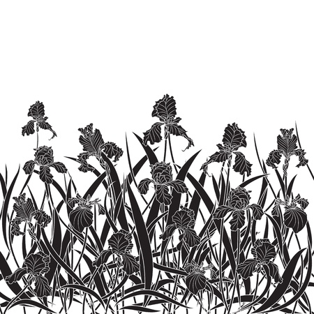 art nouveau: vector illustration of irises in black and white colors