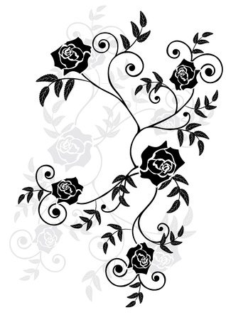 rose: vector illustration of roses in black, grey and white colors