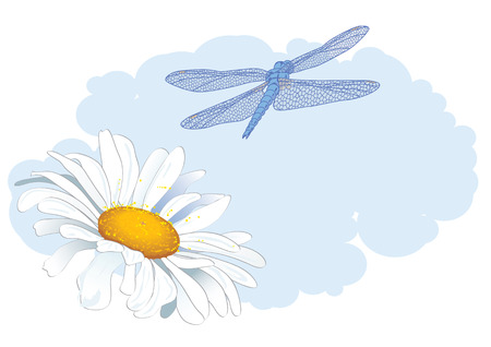 ox eye daisy: vector background with daisy and dragonfly   EPS 10