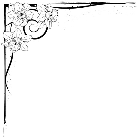 vector border of narcissus in black and white colors