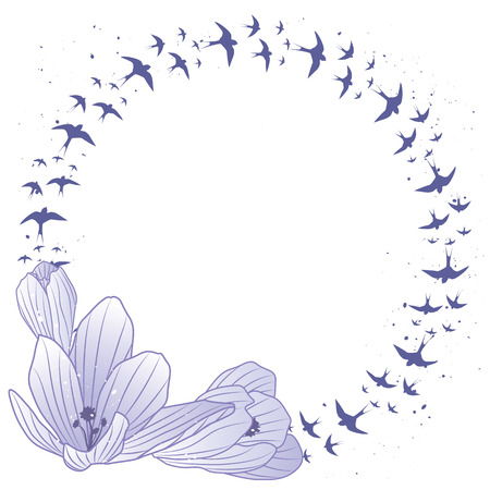 vector frame with flowers of crocus and swallow  Vector