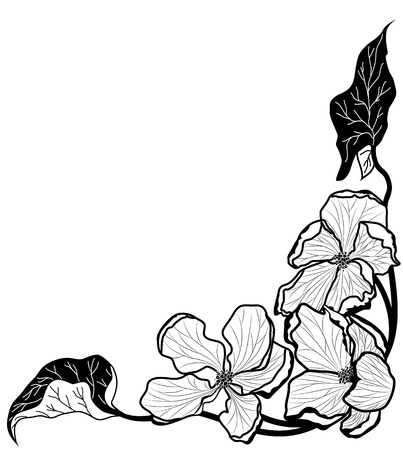 vector background with apple flowers  in black and white colors for corner design Vector