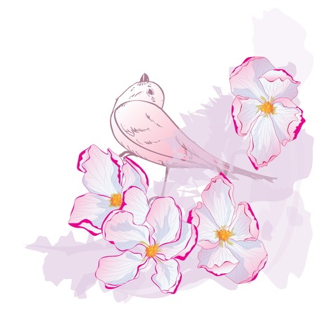 vector background with flowers of apple tree and bird  EPS 10  Vector