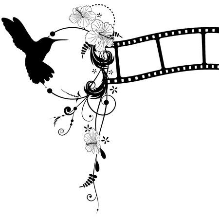 filmnegativ: Vektor-Hintergrund mit Kolibri, Hibiskus und Filmstreifen Illustration