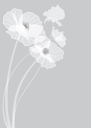 벡터 회색 색상에서 양 귀 비의 꽃과 배경 EPS 10