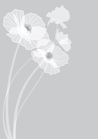 vector background with flowers of poppies in grey colors  EPS 10