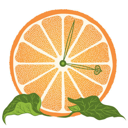 illustration of stylized  orange slice  as a clock Vector