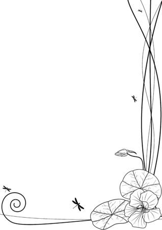 nasturtium: vector background with nasturtium and dragonflies in white and black colors Illustration