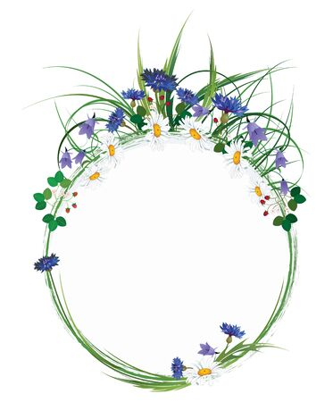 vector oval  floral frame with wild flowers Illustration