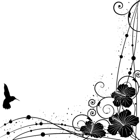 white flowers: Vector background with Hummingbird and Hibiscus in black and white colors for corner design