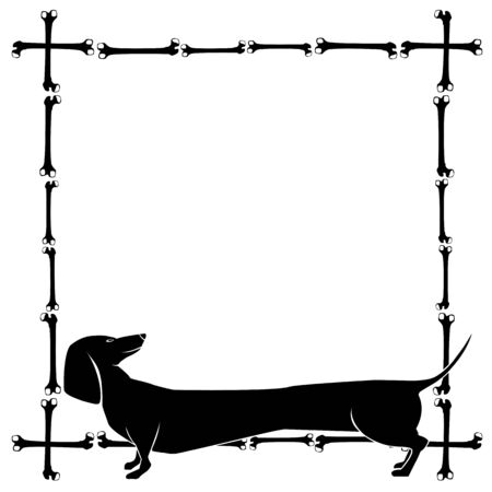 badger dog: vector frame with dachshund and bones in black and white colour