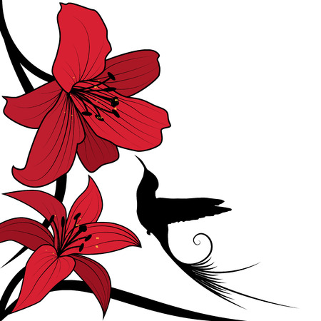 lily: background with red lily and hummingbird