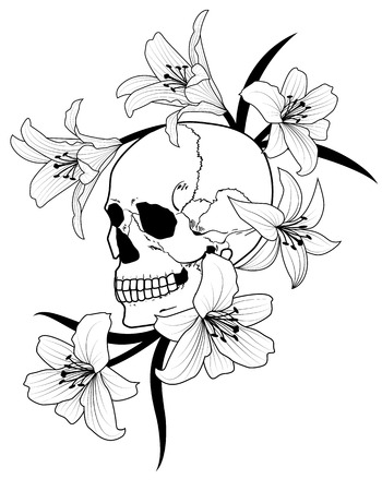 necromancy: illustration of skull  and lily  in black and white Illustration