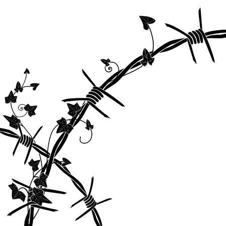 d�livrance: illustration avec du fil de fer barbel� et de lierre dans les couleurs noir et blanc