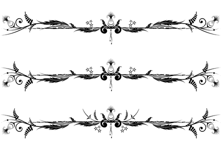 dividing lines: set of vector floral vignette in black and white colors