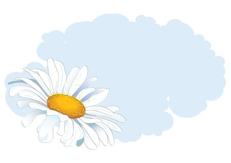 vector floral background with daisy and cloud