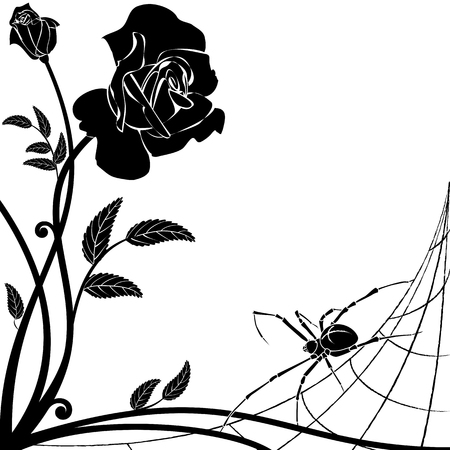 finesse: vector background with rose and spider in black and white Illustration