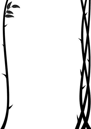 illustrazione vettoriale di ramo di rosa con le spine