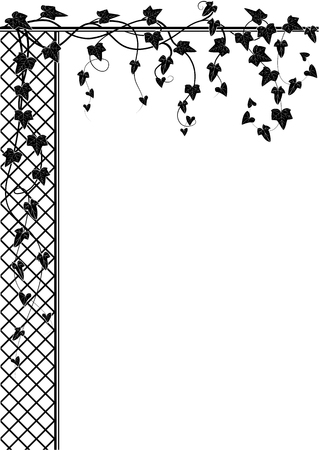 vector background for corner designe with ivy and lattice in black and white