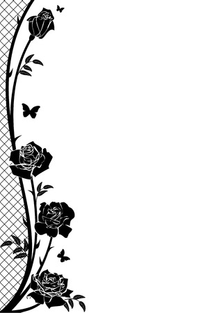 flower art: vector border with rose, butterflies and lattice in black and white color Illustration