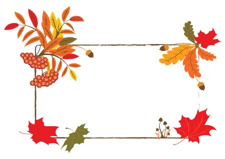 vector autumnal frame with mushrooms, ashberry and maple foliage