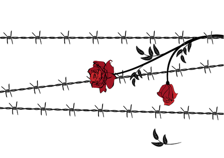 délivrance: vector illustration with barbed wire and rose in red, black and white colors