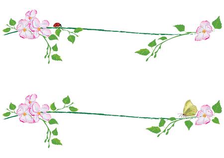 Set di divisori di primavera vettoriale con rami di betulla e fiori di mela. Vettoriali
