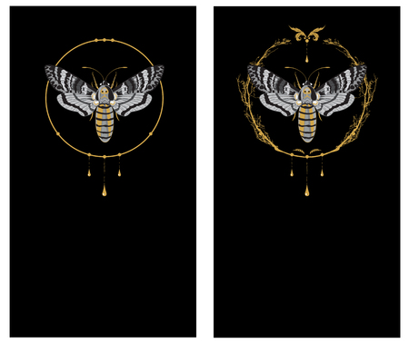 set of backgrounds with butterfly death head hawk in gold and black colors