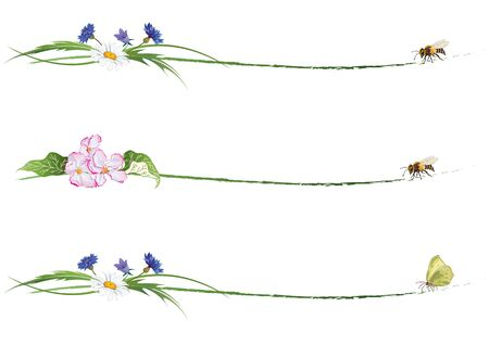 set of floral dividers with bee, butterfly, flowers of apple and wild flowers Vektorgrafik