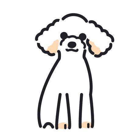Toy poodle posing in a sitting position Vektorové ilustrace
