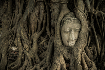 Ayutthaya  Buddha Head in Tree Roots, Wat Mahathat