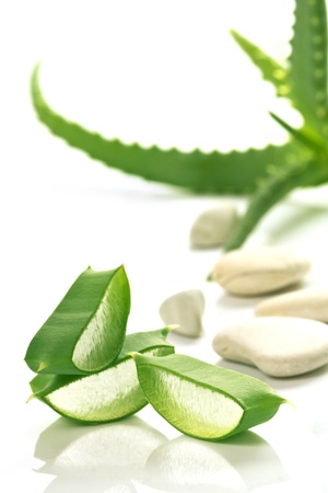 botanical medicine: Aloe Vera sloced and whole with stones Stock Photo
