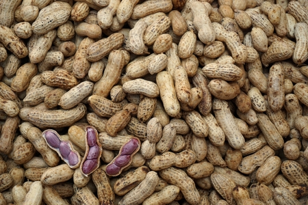 goober: group of boiled peanut sale in the market Stock Photo
