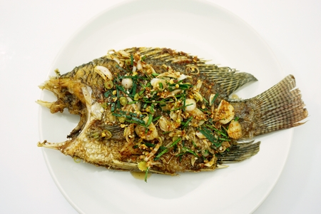 fried Nile tilapia fish with the spicy sauce photo