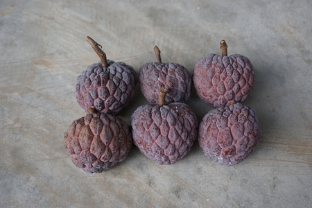 background person: used purple custard apple to be fruit count series in number six Stock Photo