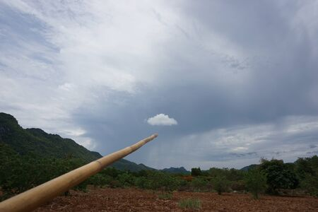 bamboo stick: abstract of used bamboo stick point to the cloud