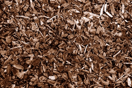 wood chip: abstract of wood chip for background used