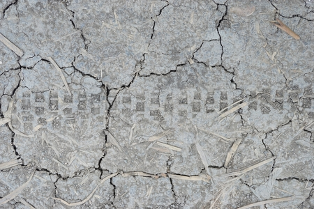 abstract of dry soil texture for background used